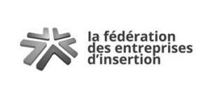 logo federation-entreprises-insertion